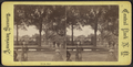 On the Mall, from Robert N. Dennis collection of stereoscopic views 2.png