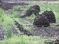 One way to keep the turf dry - panoramio.jpg