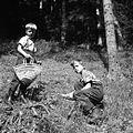 Otroci nabirajo gobe v gozdu, Skomarje 1963 (2).jpg