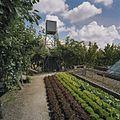 Overzicht van watertoren - Honselersdijk - 20405467 - RCE.jpg