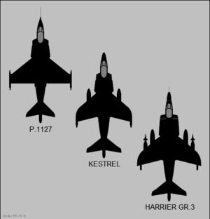 Ralph Hooper - Evolution of the Harrier's wing