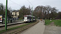 PCC's in stadspark lijn 24.jpg