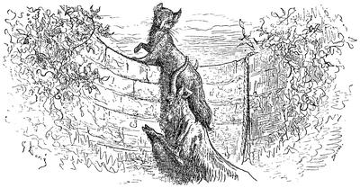 Lis I Kozieł 1876 Wikiźródła Wolna Biblioteka