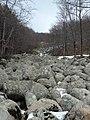 PP01 Каменната река край хижа Селимица, Природен парк Витоша.jpg