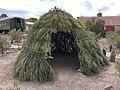 Paiute brush shelter.jpg