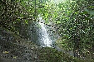 Pali Hike Waterfalls