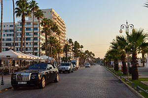 Palm trees promenade.JPG