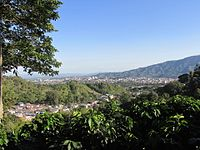 Panorama Ibague.JPG