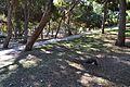 Parc Reina Sofia de Guardamar del Segura, paó.JPG