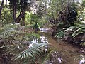 Parque Estadual Lapa Grande - Montes Claros MG - panoramio (7).jpg