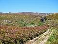 Parque Natural de Montesinho Porto Furado trail (5733164204).jpg
