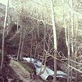 Paseo por el río Arenal.jpg