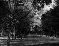 Passeio Público, a alameda central pouco antes da demolição, c. 1883.png