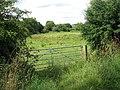 Pasture adjoining Holverston Hall - geograph.org.uk - 1397298.jpg