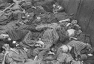 Paul Averitt - Dachau 11