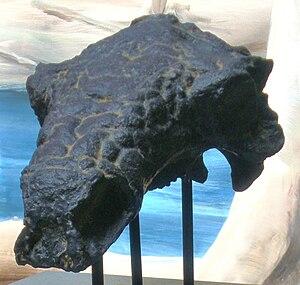 Albian - Pawpawsaurus