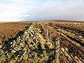 Peat Law - geograph.org.uk - 285319.jpg
