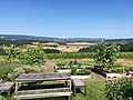 Penner Ash Winery View in Willamette Valley.jpg