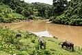 Pensiangan Sabah-Sungai-Tagol-01.jpg