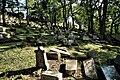 Peruc, židovský hřbitov- panoramio (3).jpg