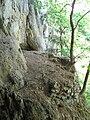 Petershöhle 06, Donautal.JPG