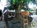 Petilasan Pamanahan Depok Pj DSC 2284s.jpg