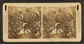 Picking cotton in a great plantation in North Carolina, U.S.A, from Robert N. Dennis collection of stereoscopic views.png