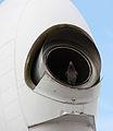 Pigeon dans un avion.jpg
