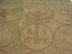 Etrog - Original mosaic of ancient Maon Synagogue (before the 6th century CE), depicting etrogs at the base of a menorah