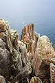 Pillars of Cape Raoul 2.jpg