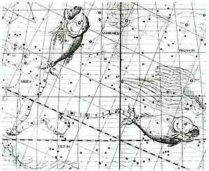 """Pisces (astrology) - """"A cord joins the tails of Pisces, the two fishes,"""" from Atlas Coelestis."""