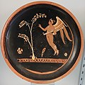 Plate with winged Eros and tree, Apulia, 360-350 BC, H 6038 - Martin von Wagner Museum - Würzburg, Germany - DSC05837.jpg