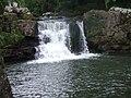 Pollanassa waterfall Mullinavat.jpg