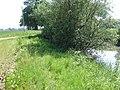 Pond Beside Fir Lane - geograph.org.uk - 454510.jpg