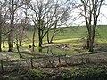 Pond at Owlacombe - geograph.org.uk - 145333.jpg