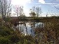 Pond in Fairwater Park - geograph.org.uk - 1050188.jpg