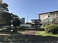 Pond in Hakozaki Campus of Kyushu University 4.jpg
