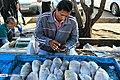 Posht-e Shahr Fish Market 2020-01-22 26.jpg