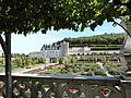 Potager du château de Villandry 12.JPG
