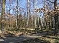 Prague Kunraticky Forest Centr1.jpg