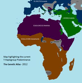 Afroasiatic Urheimat - Haplogroup E (Y-DNA) (ref. Genetic Atlas)