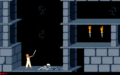 Prince of Persia 1 - MS-DOS - Level 1 - Sword.png
