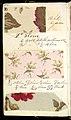 Printer's Sample Book, No. 19 Wood Colors Nov. 1882, 1882 (CH 18575281-54).jpg