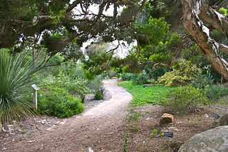 San Diego Botanic Garden - Image: Quail botanical gardens