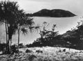 Queensland State Archives 1096 Seaforth Island from Lindeman Island Whitsunday Passage c 1931.png