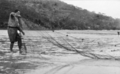 Queensland State Archives 938 Mr Hastings Deering takes on Net Fishing in the Whitsunday Passage c 1931.png