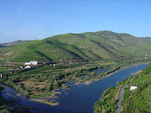 Peso da Régua - The Douro River valley running through the headlands of Peso da Régua