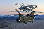 RAF CH-47 Chinook and US Marine CH-53 Sea Stallion MOD 45164923.jpg