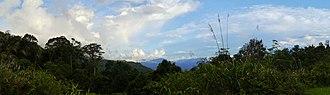 Tropical rainforest climate - Upland rainforest in Borneo. Sabah, Malaysia