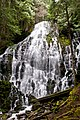 Ramona Falls (Oregon).jpg